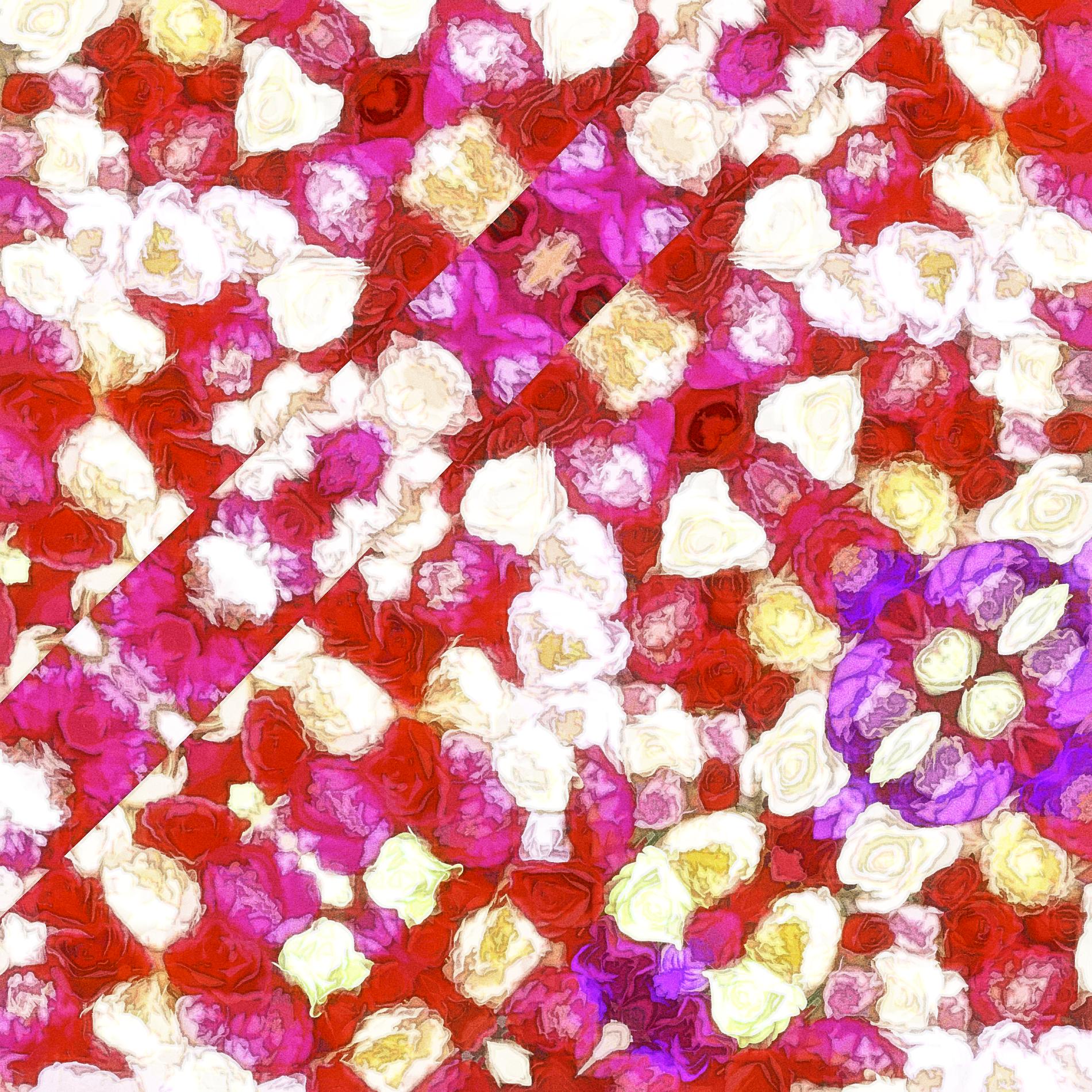 上品なキラキラローズ&おしゃれなバラの輝き:水彩